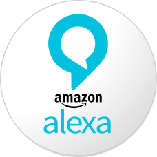 Amazon's Alexa App Was #1 on Free App Chart on Christmas Day