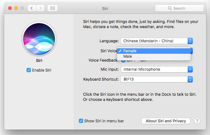 How to Change the Language, Gender, or Accent of Siri on