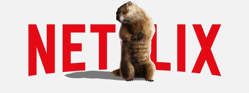 February 2018 Netflix Comings and Goings