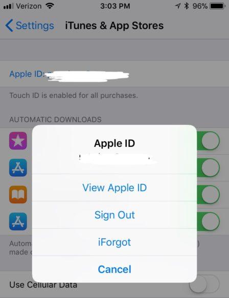 remove_credit_card_itunes_iphone_2