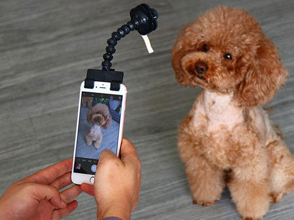 MacTrast Deals: Adjustable Pet Selfie Smartphone Attachment