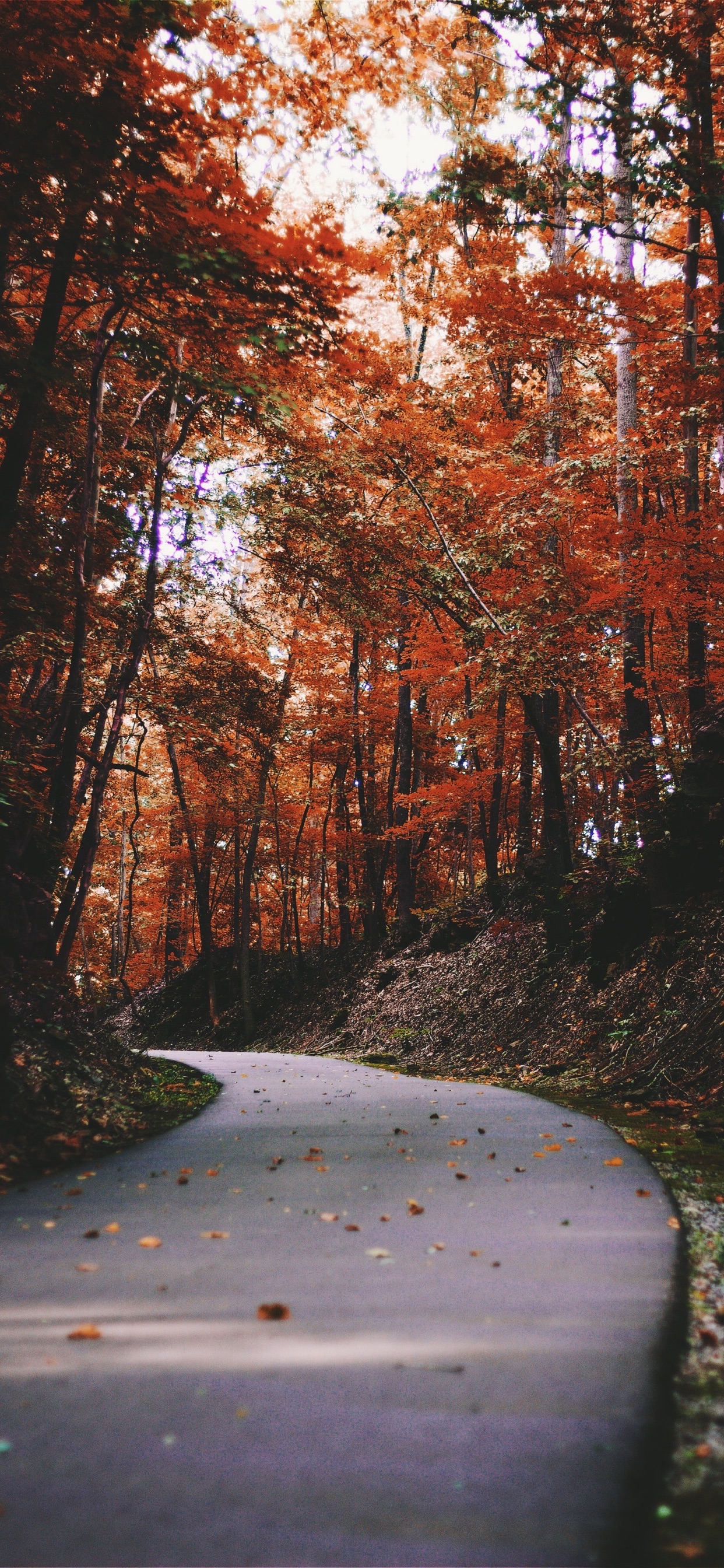 Wallpaper Weekends Autumn Iphone Xs Max Wallpapers
