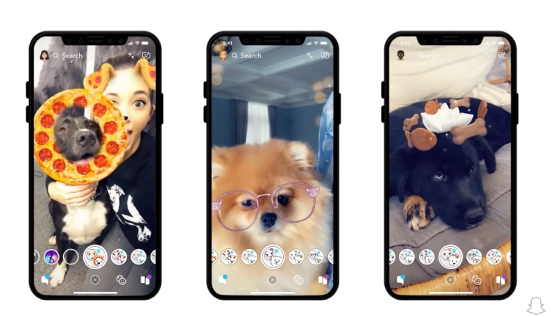 Snapchat Adds Lenses Designed for Dog Selfies