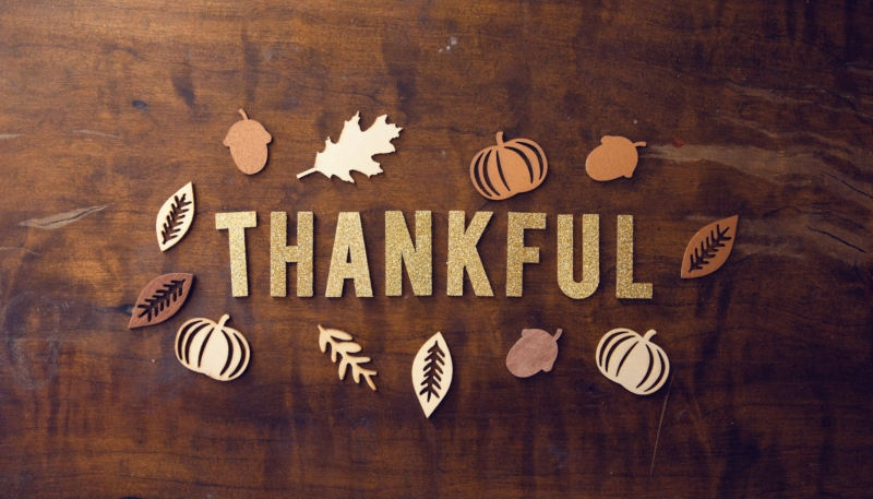 Happy Thanksgiving Day to All of Our U.S. Readers!