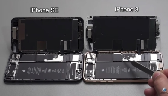 iPhone SE and iPhone 8