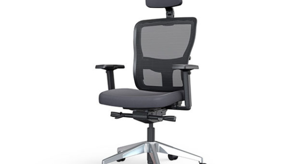 Yaasa Ergonomic Office Chair
